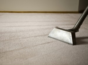 Steam Carpet Cleaning
